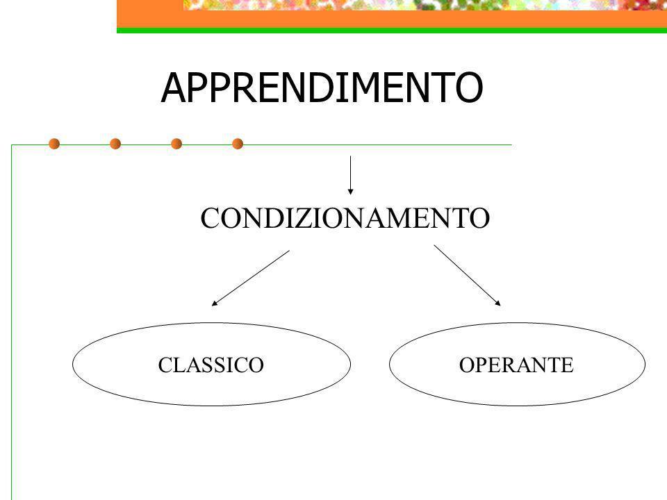 APPRENDIMENTO CONDIZIONAMENTO CLASSICOOPERANTE