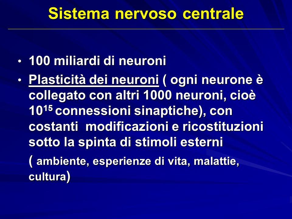 Sistema nervoso centrale 100 miliardi di neuroni 100 miliardi di neuroni Plasticità dei neuroni ( ogni neurone è collegato con altri 1000 neuroni, cio