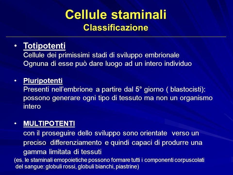 Totipotenti Cellule dei primissimi stadi di sviluppo embrionale Ognuna di esse può dare luogo ad un intero individuo Pluripotenti Presenti nellembrion