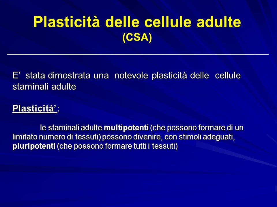E stata dimostrata una notevole plasticità delle cellule staminali adulte Plasticità : le staminali adulte multipotenti (che possono formare di un lim