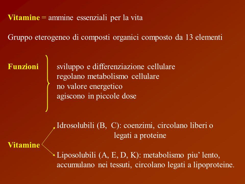 Vitamina D Funzione: metabolismo del calcio Fabbisogno: 2.5 ug/die fegato di pesce di merluzzo Fonte 7 deidrocolesterolo (pelle, raggi UV)