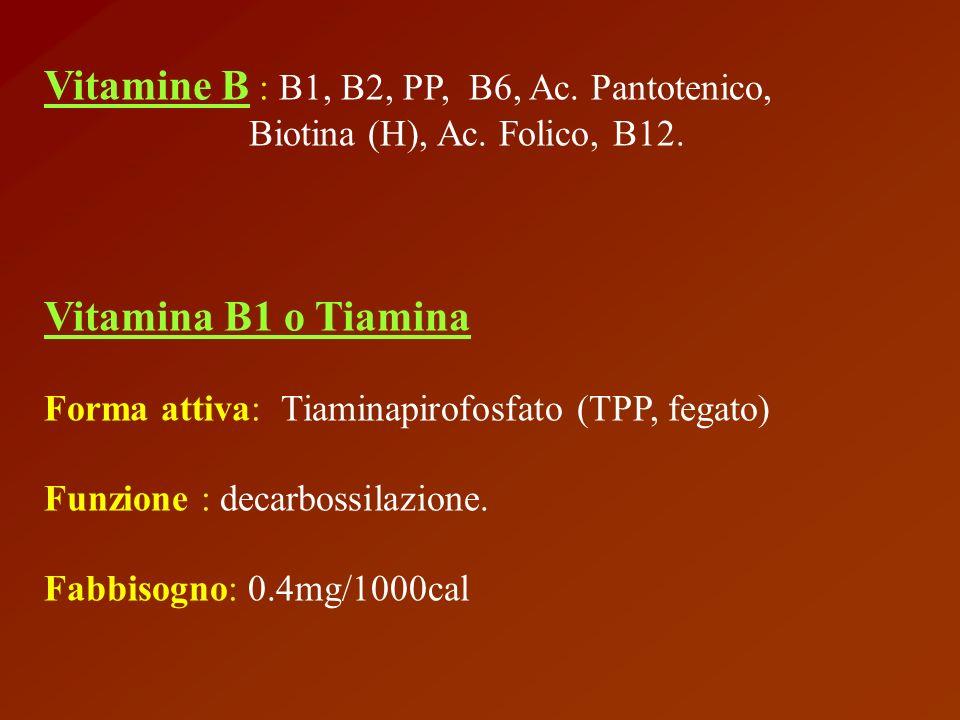 animale alimenti di origine vegetale Fonte flora intestinale Eliminazione: urinaria dieta basata su amilacei, alcolismo Carenza Beri –Beri (sintomi neurologici e cardiaci)