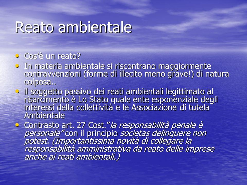 I reati ambientali : delitti senza castigo.