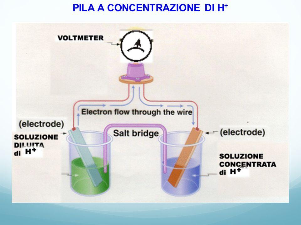 PILA A CONCENTRAZIONE DI H +