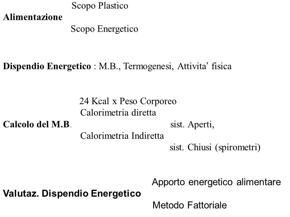 Scopo Plastico Alimentazione Scopo Energetico Dispendio Energetico : M.B., Termogenesi, Attivita fisica 24 Kcal x Peso Corporeo Calorimetria diretta C