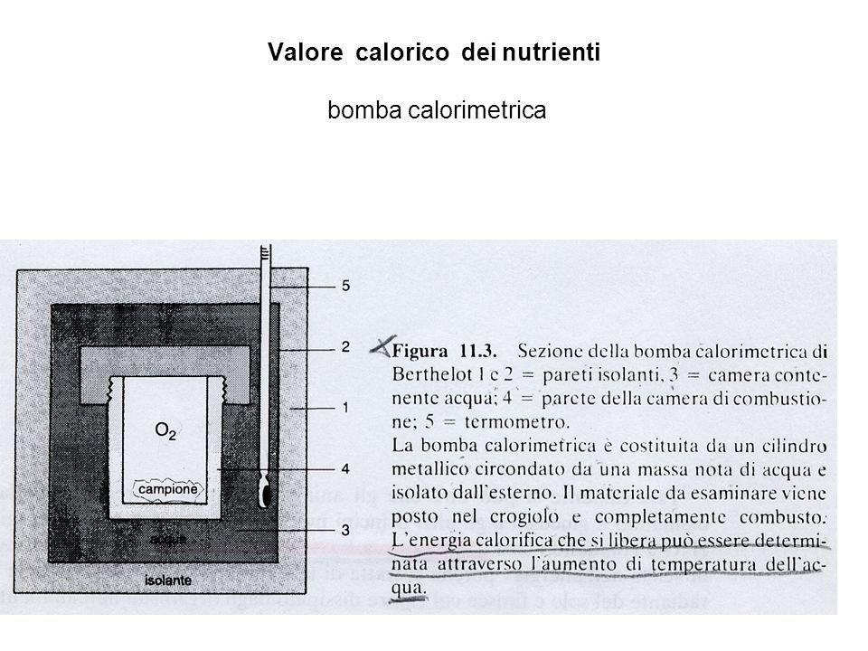 Alimentazione durante allattamento Surplus: - 500 Cal./die - 24 gr Proteine - Ca, P Evitare : - sostanze che alterano il gusto del latte - bevande nervine