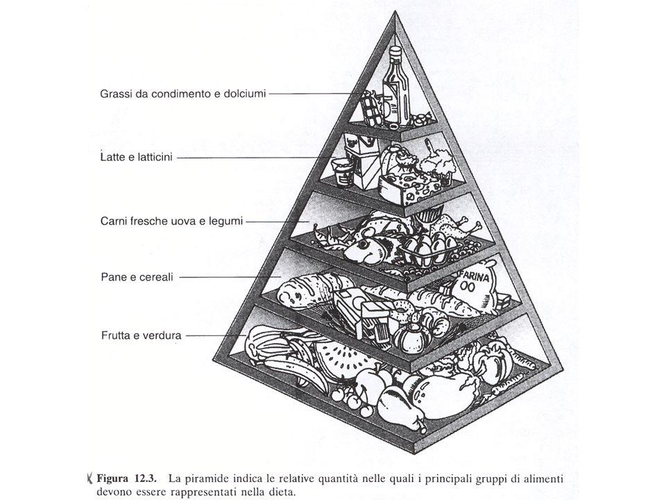 Alimentazione mediterranea -ridotto apporto energetico -Limitato consumo di prodotti di origine animale (grassi saturi e colesterolo -Maggior consumo di carboidrati complessi, verdura e frutta -Moderato uso di zucchero, alcol, sale.