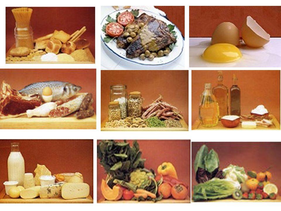 Alimentazione Scopo plastico Scopo energetico