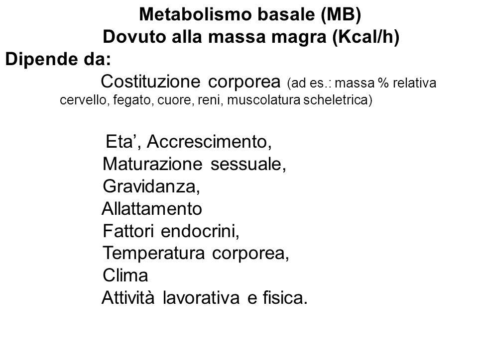 Bilancio Energetico Fabbisogno E.= Dispendio E.