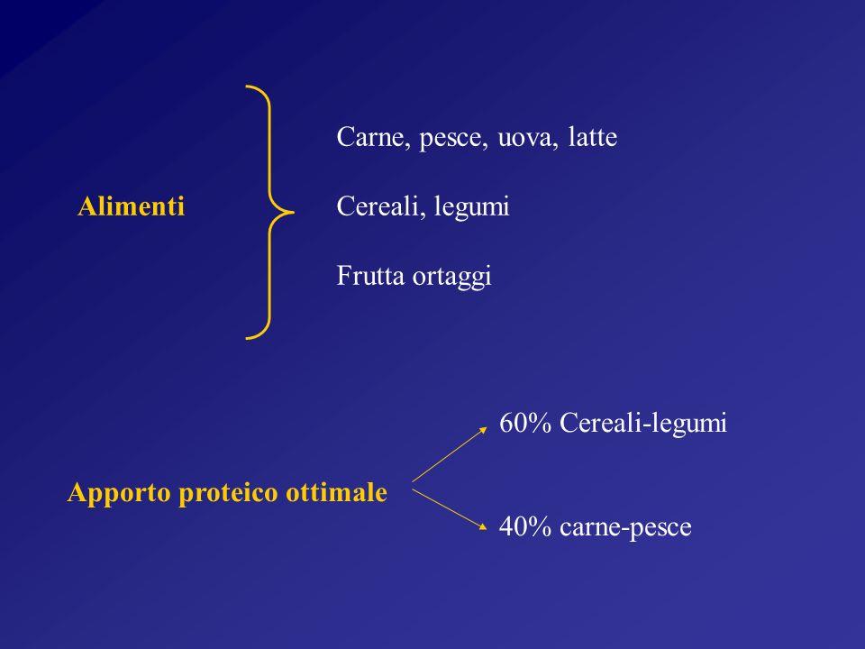 Carne, pesce, uova, latte Alimenti Cereali, legumi Frutta ortaggi 60% Cereali-legumi Apporto proteico ottimale 40% carne-pesce