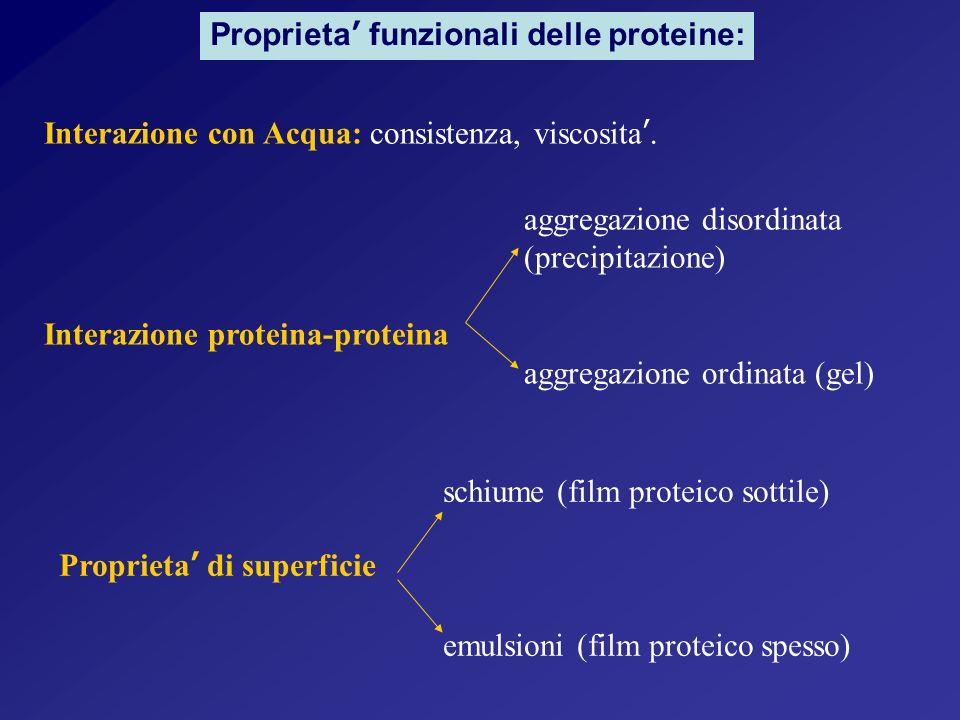 Proprieta funzionali delle proteine: Interazione con Acqua: consistenza, viscosita.