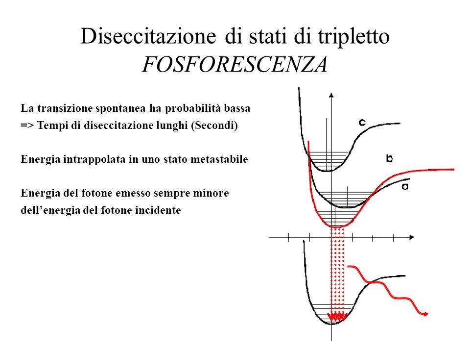 FLUORESCENZA: influenza dellintorno molecolare Attenuazione dellintensità di FLUORESCENZA Fenomeni dissipativi non radiativi: Urti con molecole, Urti con pareti metalliche Transizioni in stati di triplettoDiminuzione della probabilità di fluorescenza (Intersystem crossing) Quenching Urti con molecole (O 2 e I - ) capaci di assorbire lenergia in eccesso Foto-dissociazione e foto-chimicaLenergia in eccesso è utilizzata da altre molecole (bleaching)per dissociarsi o per attivare reazioni chimiche Intensità Concentrazione Concentrazione ottimale Intensità di fluorescenza in una soluzione