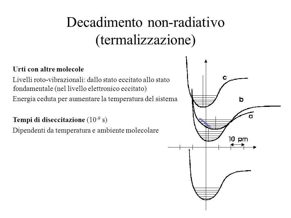 Diseccitazione radiativa: FLUORESCENZA Emissione di un fotone E = h fl => Transizione elettronica spontanea Dal livello roto-vibrazionale fondamentale del livello elettronico eccitato ad stati roto-vibrazionali eccitati del livello elettronico fondamentale Tempi tipici 10 -15 s