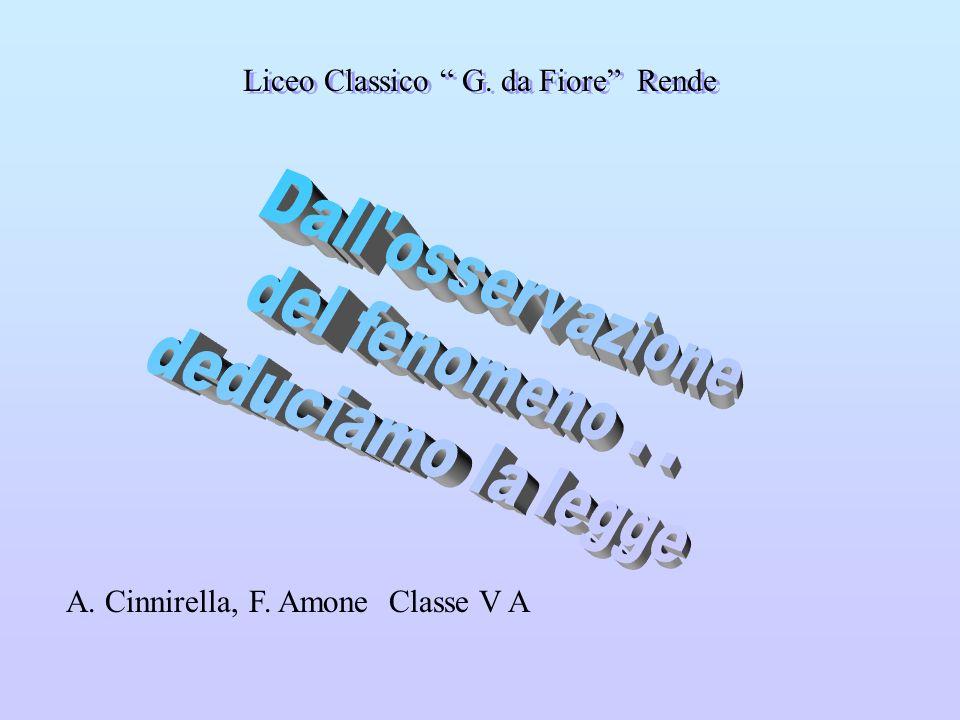 A. Cinnirella, F. Amone Classe V A Liceo Classico G. da Fiore Rende