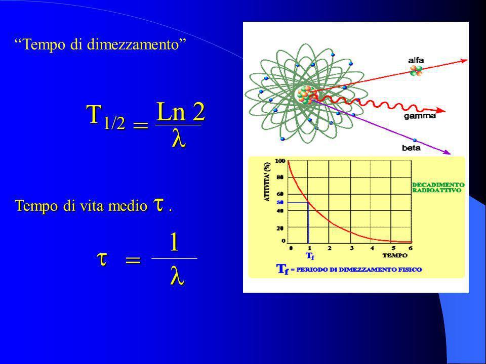 Tempo di vita medio. Tempo di dimezzamento Ln 2 T 1/2 T 1/2 = = 1