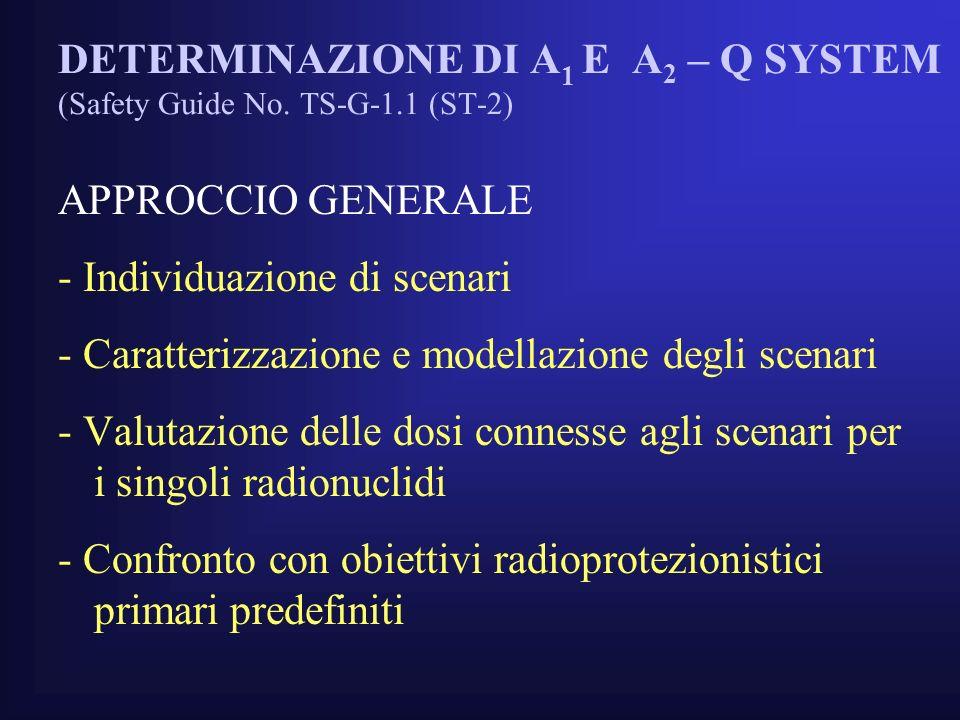 DETERMINAZIONE DI A 1 E A 2 – Q SYSTEM (Safety Guide No.