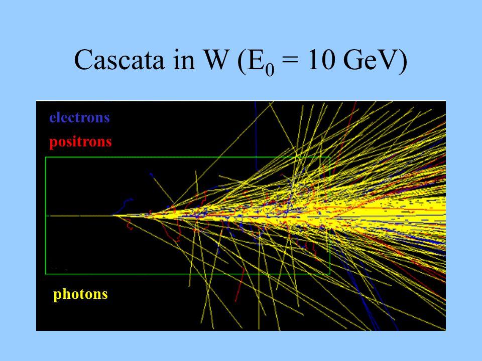 Cascata in W (E 0 = 10 GeV) photons electrons positrons