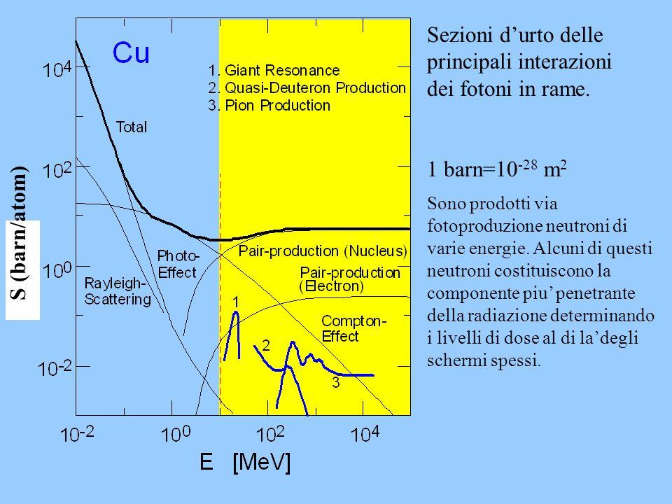 S (barn/atom) Sezioni durto delle principali interazioni dei fotoni in rame. 1 barn=10 -28 m 2 Sono prodotti via fotoproduzione neutroni di varie ener