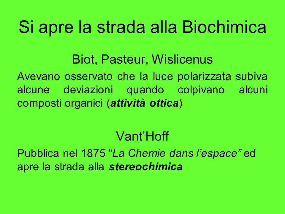 Si apre la strada alla Biochimica Biot, Pasteur, Wislicenus Avevano osservato che la luce polarizzata subiva alcune deviazioni quando colpivano alcuni