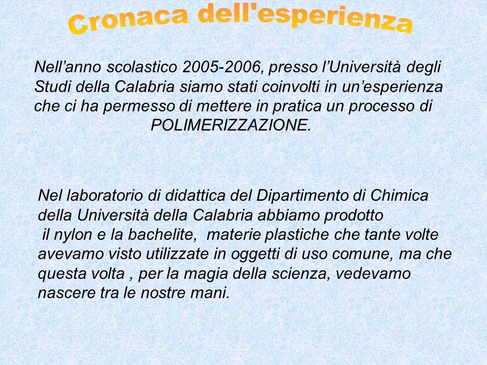 Nellanno scolastico 2005-2006, presso lUniversità degli Studi della Calabria siamo stati coinvolti in unesperienza che ci ha permesso di mettere in pratica un processo di POLIMERIZZAZIONE.