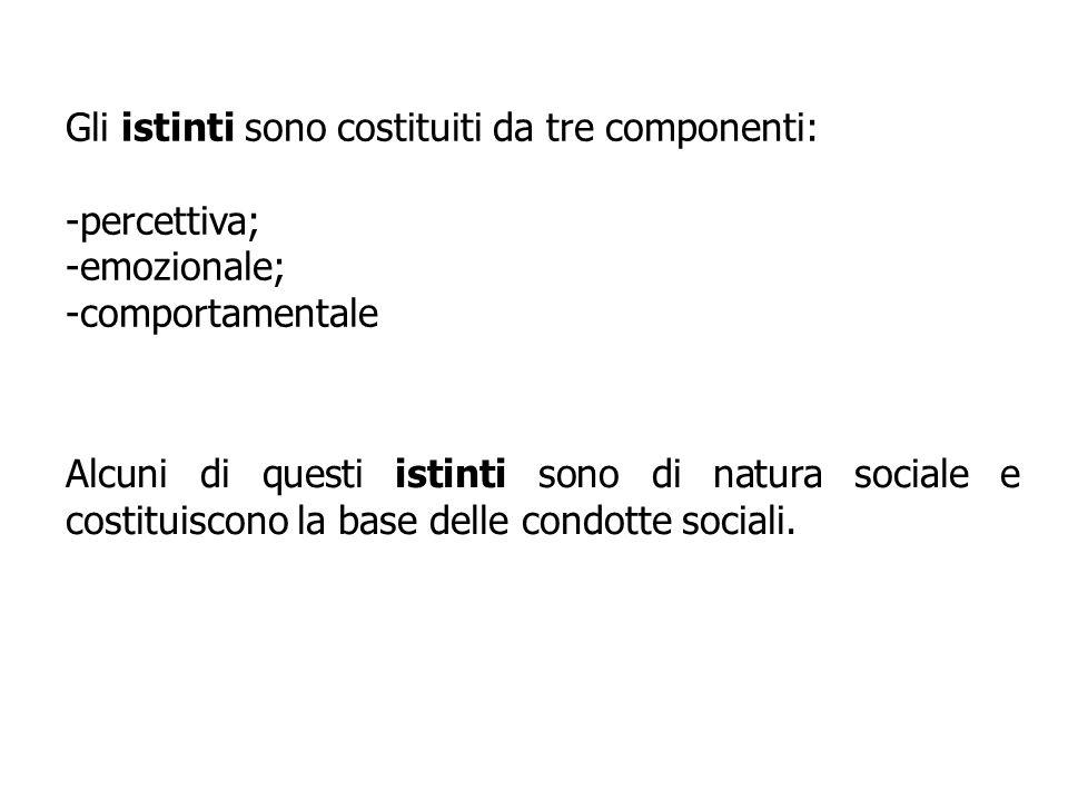 Gli istinti sono costituiti da tre componenti: -percettiva; -emozionale; -comportamentale Alcuni di questi istinti sono di natura sociale e costituisc