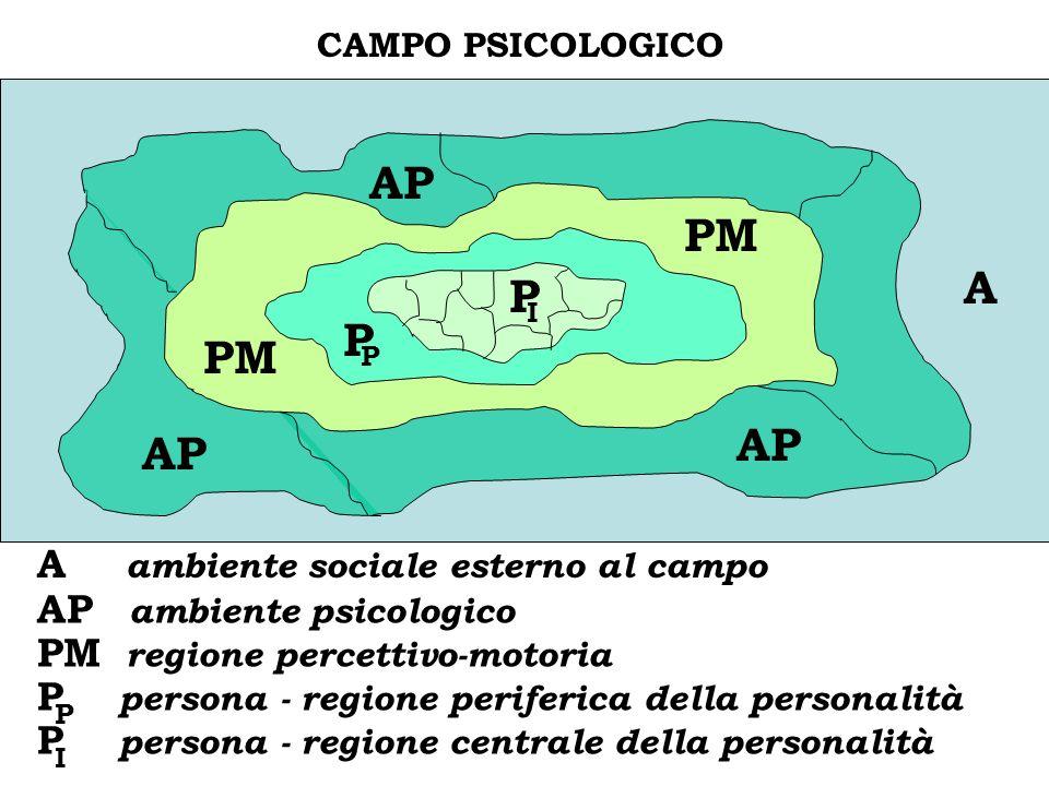 C CAMPO PSICOLOGICO AP PM P P A A ambiente sociale esterno al campo AP ambiente psicologico PM regione percettivo-motoria P persona - regione periferi