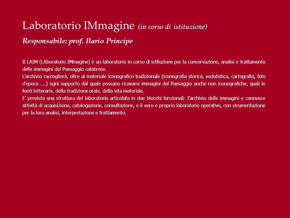 Laboratorio IMmagine (in corso di istituzione) Responsabile: prof. Ilario Principe Il LAIM (LAboratorio IMmagine) è un laboratorio in corso di istituz