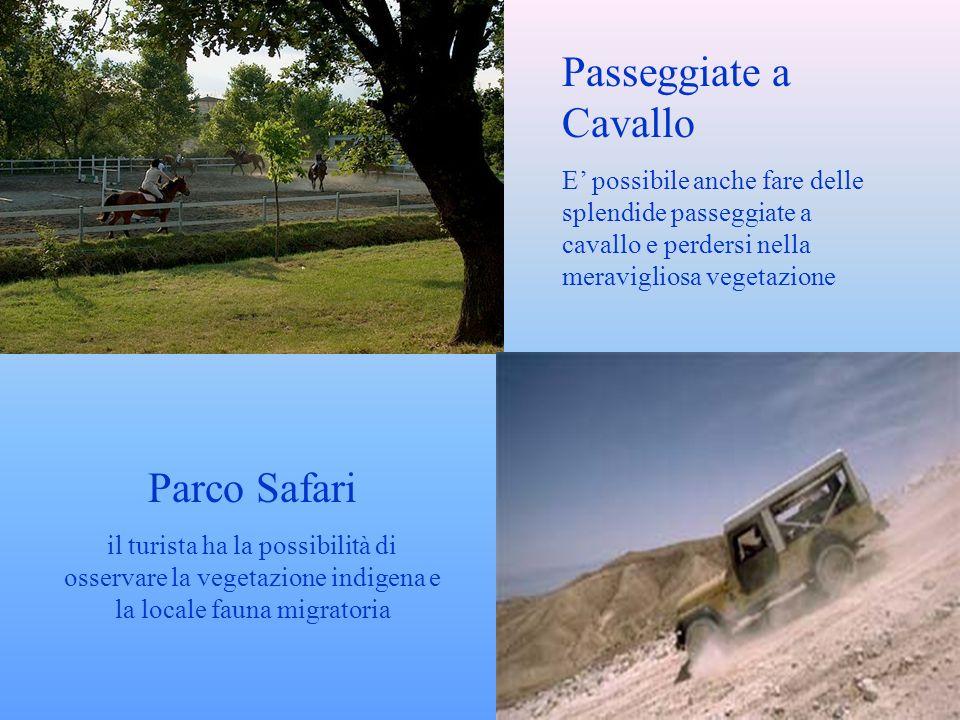 Parco Safari il turista ha la possibilità di osservare la vegetazione indigena e la locale fauna migratoria Passeggiate a Cavallo E possibile anche fare delle splendide passeggiate a cavallo e perdersi nella meravigliosa vegetazione