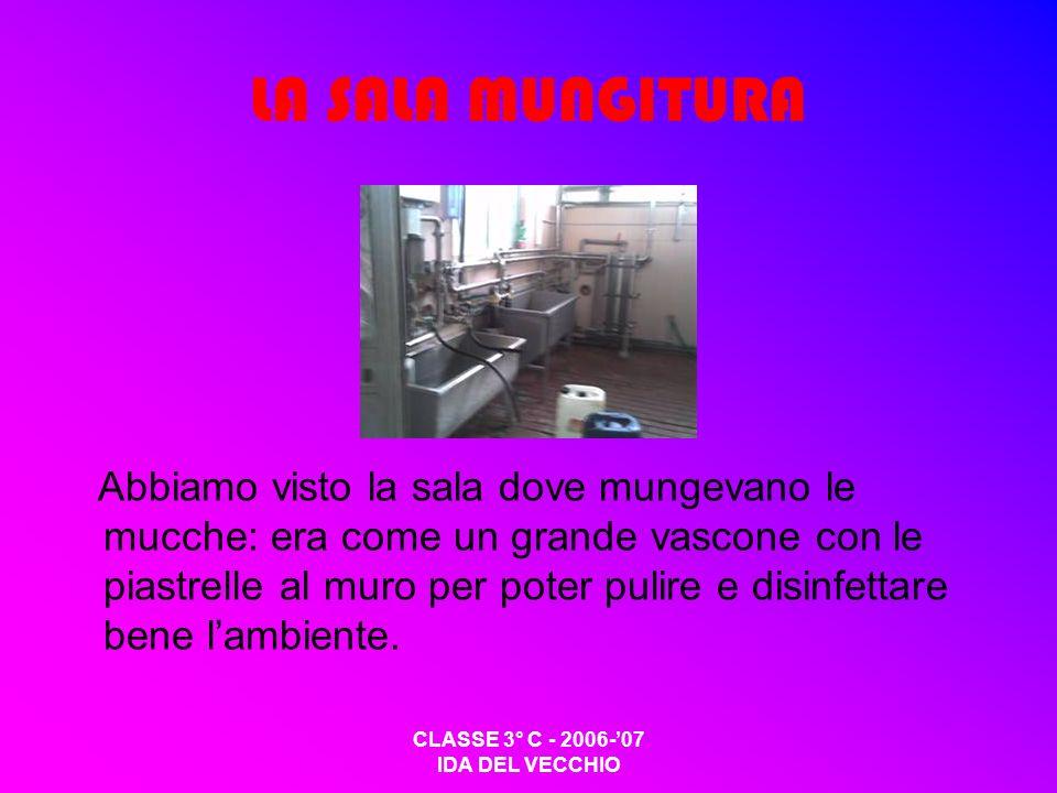 CLASSE 3° C - 2006-07 IDA DEL VECCHIO LA SALA MUNGITURA Abbiamo visto la sala dove mungevano le mucche: era come un grande vascone con le piastrelle al muro per poter pulire e disinfettare bene lambiente.