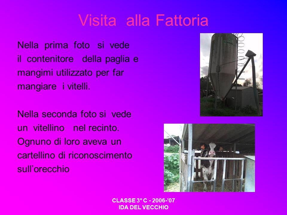 CLASSE 3° C - 2006-07 IDA DEL VECCHIO Visita alla Fattoria Nella prima foto si vede il contenitore della paglia e mangimi utilizzato per far mangiare i vitelli.