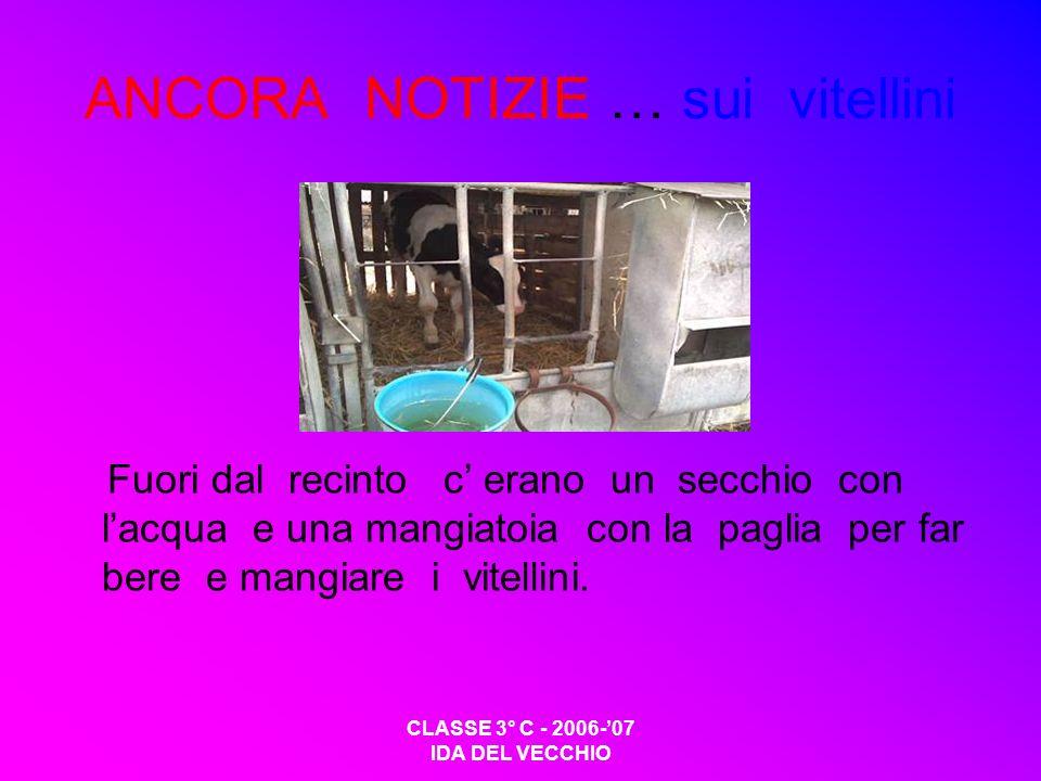 CLASSE 3° C - 2006-07 IDA DEL VECCHIO ANCORA NOTIZIE … sui vitellini Fuori dal recinto c erano un secchio con lacqua e una mangiatoia con la paglia pe