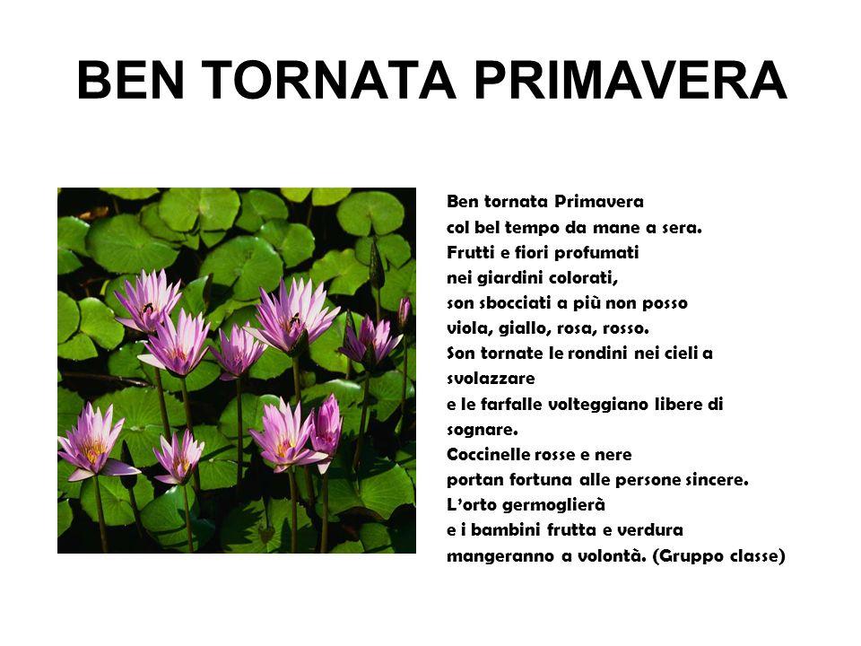BEN TORNATA PRIMAVERA Ben tornata Primavera col bel tempo da mane a sera. Frutti e fiori profumati nei giardini colorati, son sbocciati a più non poss