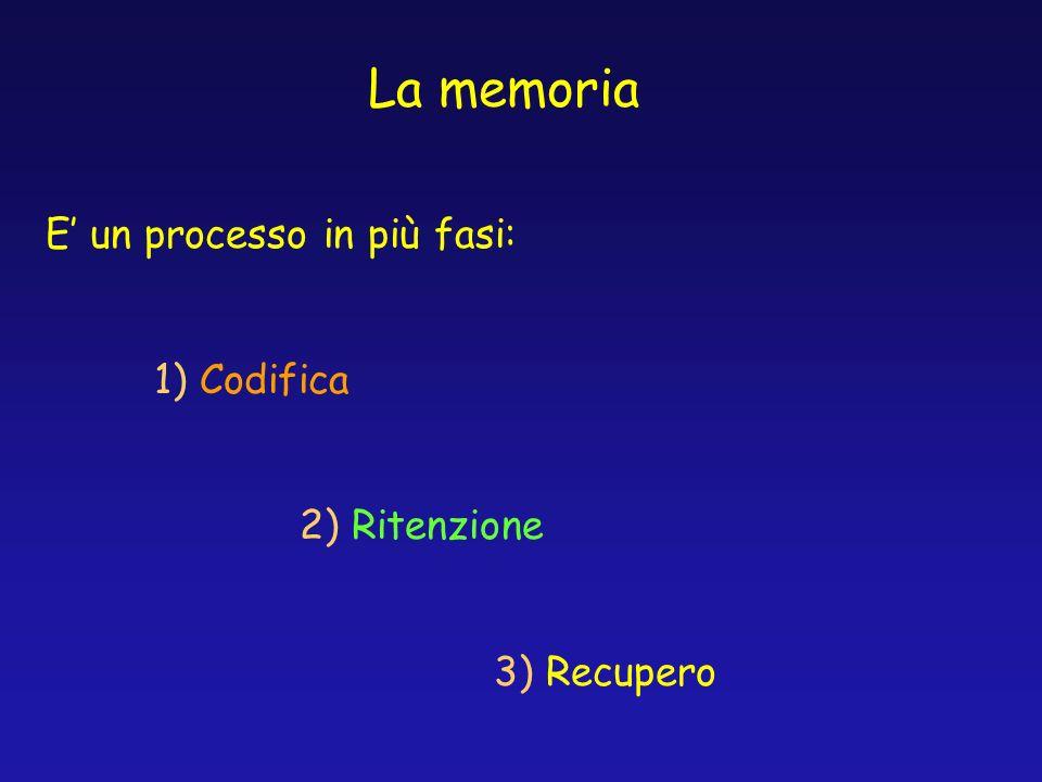 La memoria E un processo in più fasi: 1) Codifica 2) Ritenzione 3) Recupero