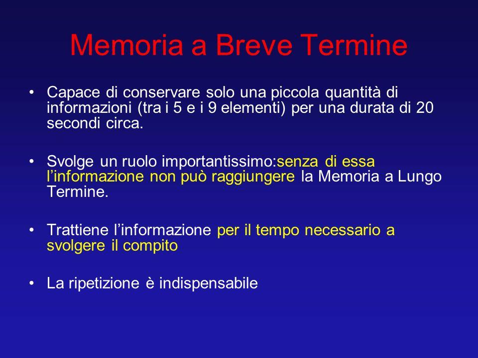 Memoria a Breve Termine Capace di conservare solo una piccola quantità di informazioni (tra i 5 e i 9 elementi) per una durata di 20 secondi circa. Sv