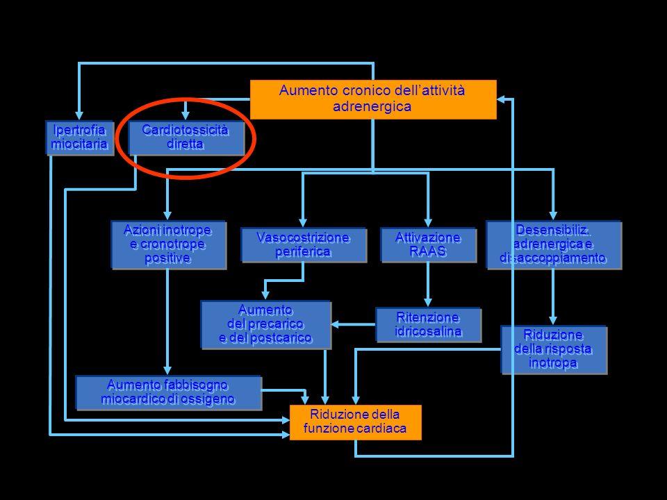 Aumento fabbisogno miocardico di ossigeno Riduzione della risposta inotropa Riduzione della risposta inotropa Ritenzione idricosalina Ritenzione idricosalina Aumento cronico dellattività adrenergica Azioni inotrope e cronotrope positive Azioni inotrope e cronotrope positive Vasocostrizione periferica Vasocostrizione periferica Attivazione RAAS Attivazione RAAS Desensibiliz.