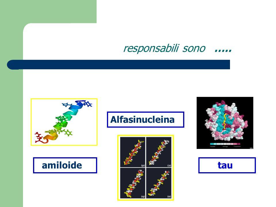 Placche e tangles squilibrio tra produzione ed eliminazione di Abeta 42 iperfosforilazione di tau La risposta infiammatoria produce la ALTERAZIONE GLIALE