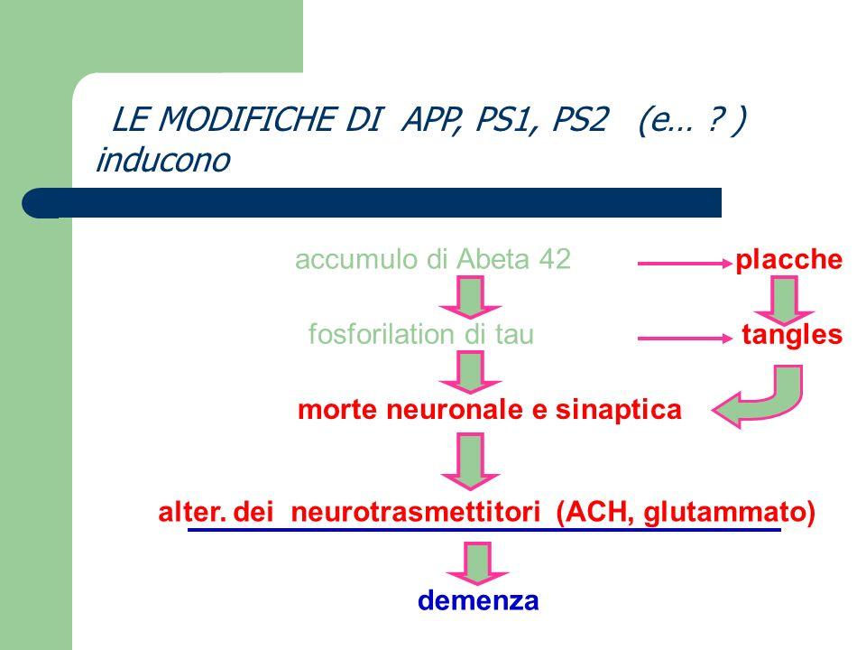 Target della terapia 1 diminuire il disequilibrio delle secretasi 2 diminuire laccumulo di amiloide 3 aumentare la quantita di acetilcolina 4 diminuire la quantita di glutammato