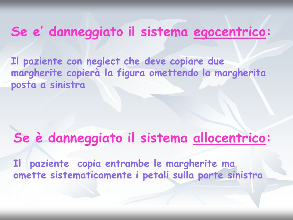 Se e danneggiato il sistema egocentrico: Il paziente con neglect che deve copiare due margherite copierà la figura omettendo la margherita posta a sin
