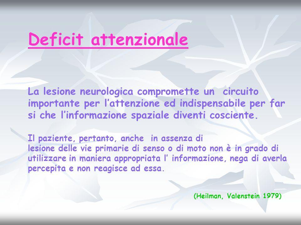 Deficit attenzionale La lesione neurologica compromette un circuito importante per lattenzione ed indispensabile per far si che linformazione spaziale