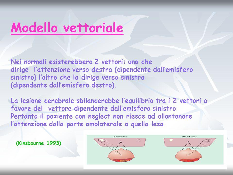 Modello vettoriale Nei normali esisterebbero 2 vettori: uno che dirige lattenzione verso destra (dipendente dallemisfero sinistro) laltro che la dirig