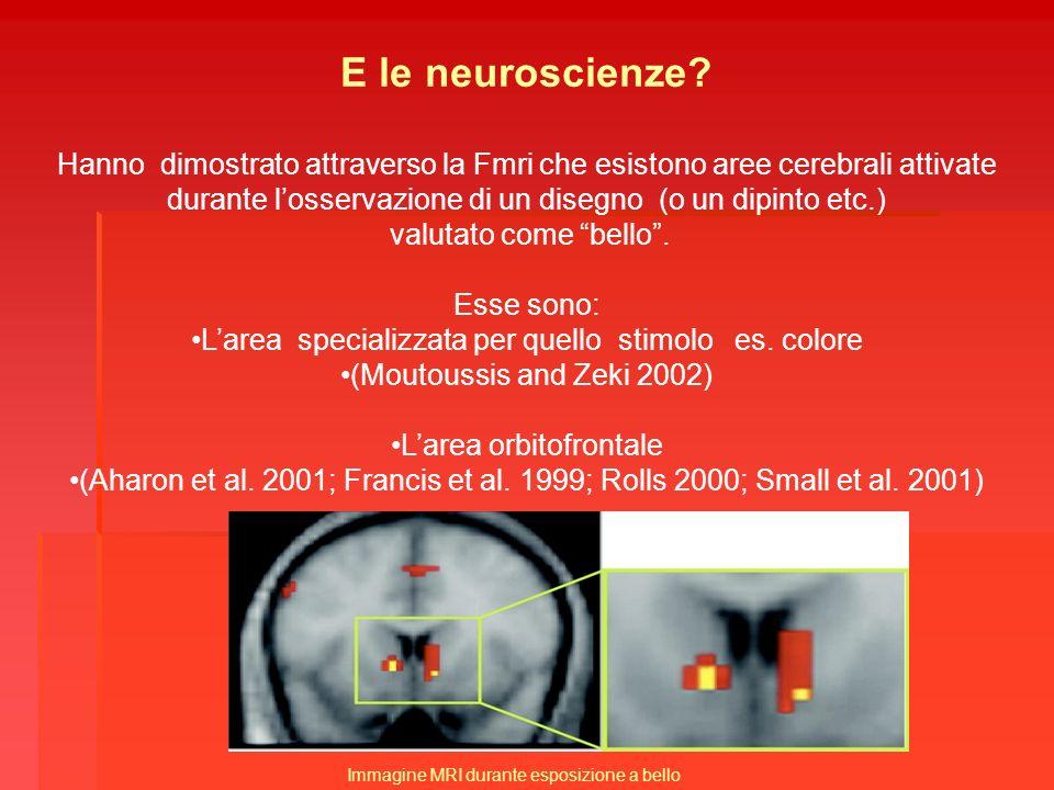 E le neuroscienze? Hanno dimostrato attraverso la Fmri che esistono aree cerebrali attivate durante losservazione di un disegno (o un dipinto etc.) va