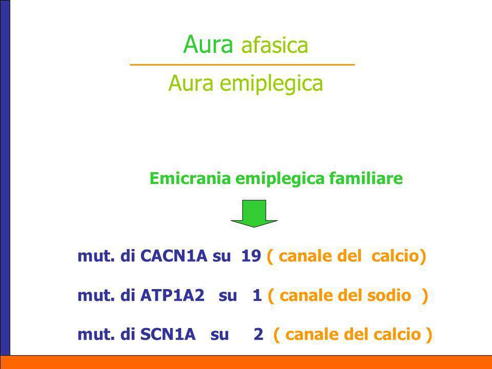 Aura afasica Aura emiplegica mut. di CACN1A su 19 ( canale del calcio) mut. di ATP1A2 su 1 ( canale del sodio ) mut. di SCN1A su 2 ( canale del calcio