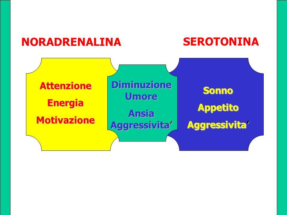 NORADRENALINA Ansiairritabilitaumore f. cognitive Diminuzione Umore Ansia Aggressivita AttenzioneEnergiaMotivazione SonnoAppetito Aggressivita SEROTON