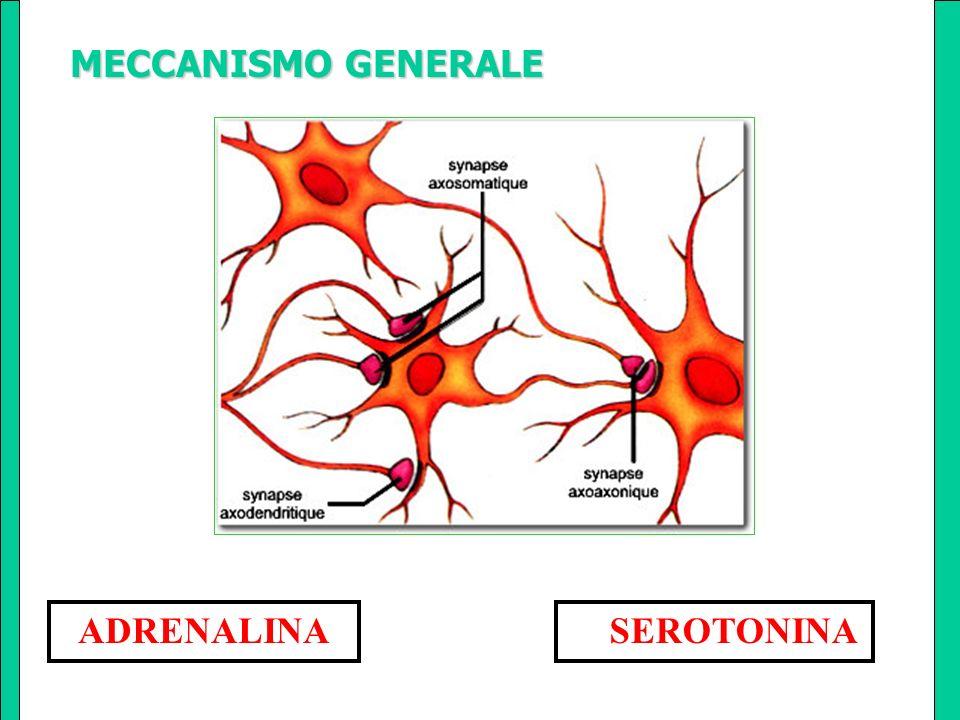 maggiore efficacia se maggiore efficacia se associata psicoterapia associata psicoterapia (cognitivo comportamentale ) Terapie associate Terapie associate
