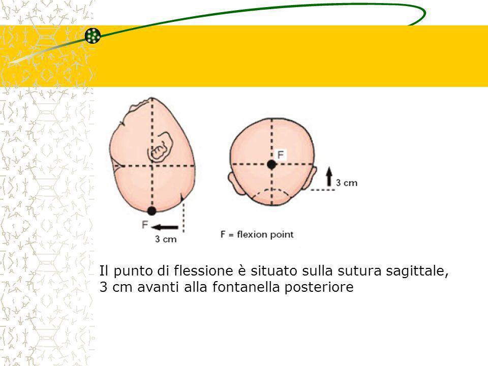 Il centro della coppetta deve essere posto sul punto di flessione con la sutura sagittale nella linea mediana