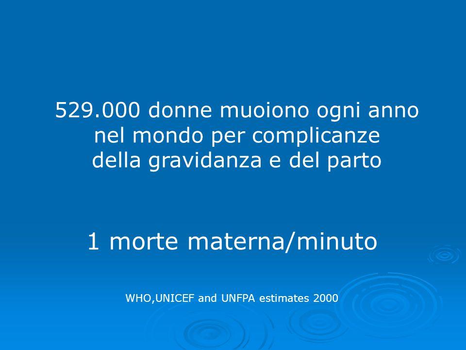 529.000 donne muoiono ogni anno nel mondo per complicanze della gravidanza e del parto 1 morte materna/minuto WHO,UNICEF and UNFPA estimates 2000