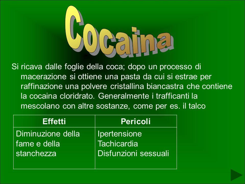 Si ricava dalle foglie della coca; dopo un processo di macerazione si ottiene una pasta da cui si estrae per raffinazione una polvere cristallina biancastra che contiene la cocaina cloridrato.