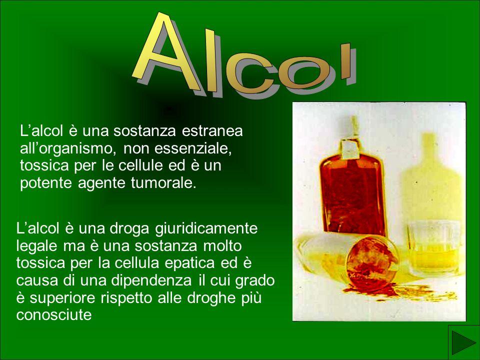 Lalcol è una sostanza estranea allorganismo, non essenziale, tossica per le cellule ed è un potente agente tumorale.