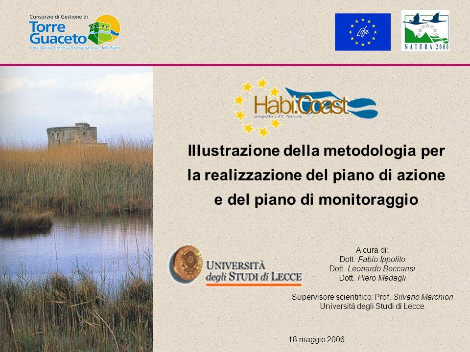 Illustrazione della metodologia per la realizzazione del piano di azione e del piano di monitoraggio 18 maggio 2006 A cura di: Dott.