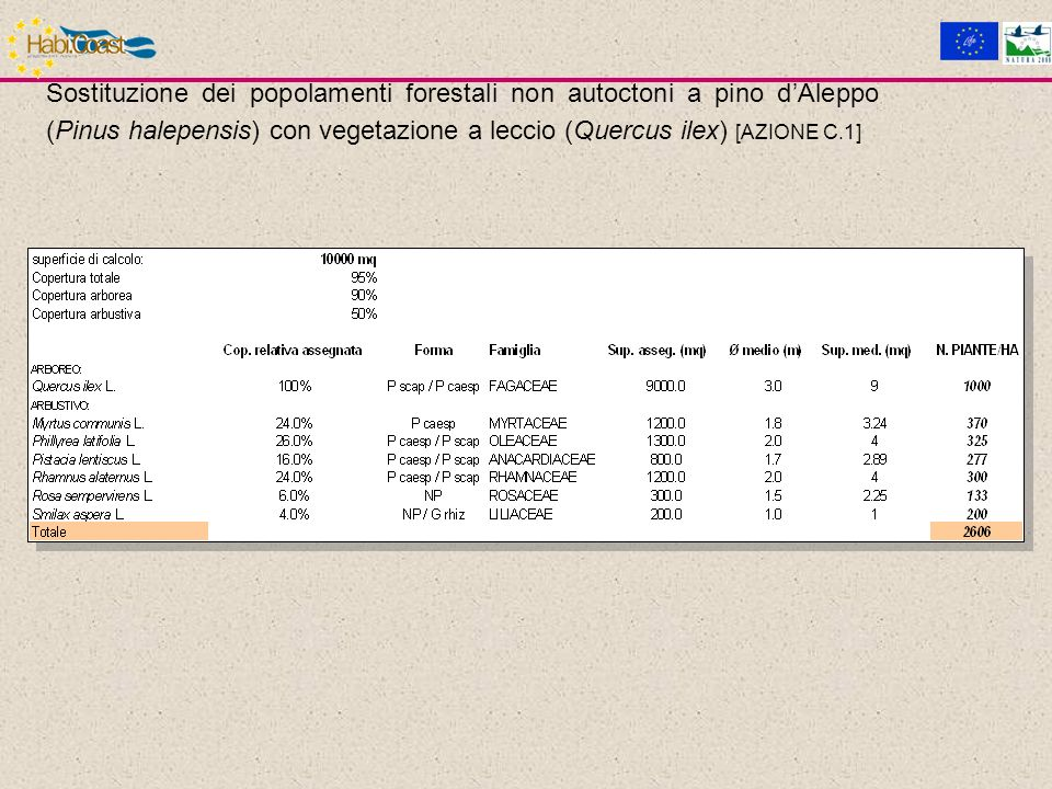 Sostituzione dei popolamenti forestali non autoctoni a pino dAleppo (Pinus halepensis) con vegetazione a leccio (Quercus ilex) [AZIONE C.1]